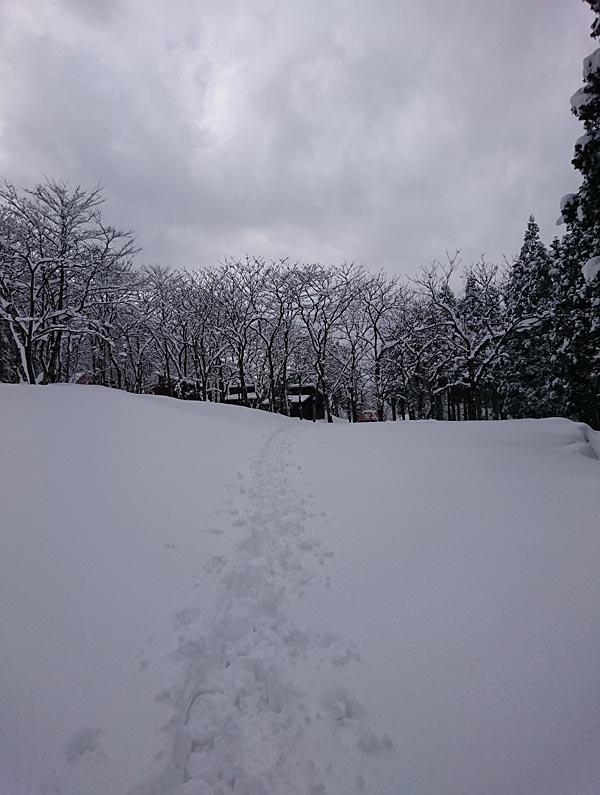 粟巣野_03