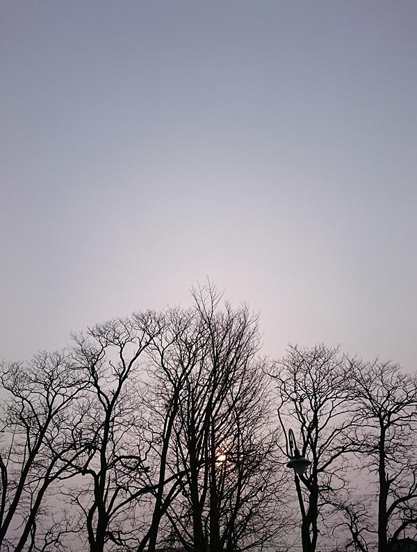 朝ラン3月_04